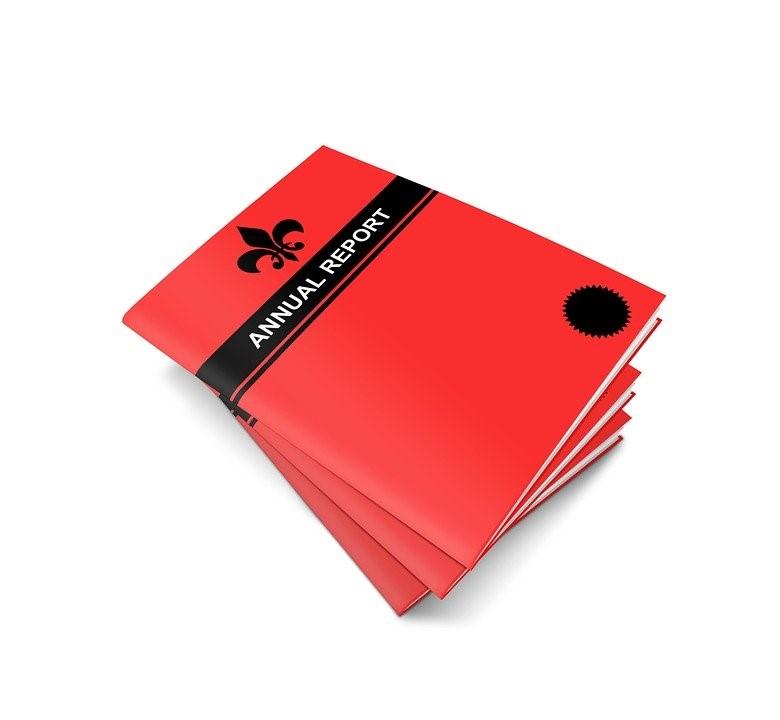 En brosjyre i rød farge med enkelt motiv.