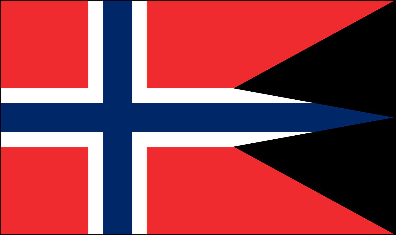 En god skribent i Oslo sikrer godt norsk språk